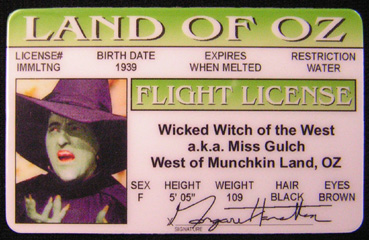 Land of Oz ID - Wicked Witch-0